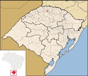 jaboticaba